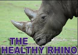 The Healthy Rhino